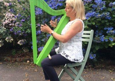 build a harp gallery-016